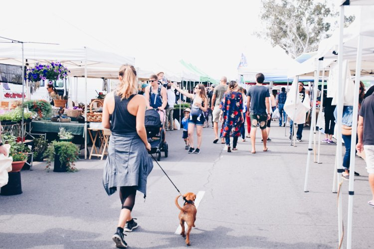 Sunday San Diego County Farmers Markets - Hillcrest Beach Farmers Market San Diego