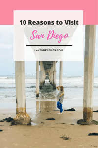 Ocean Beach - 10 Reasons to Visit San Diego