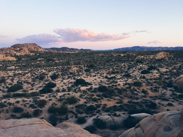 Jumbo Rocks - Joshua Tree National Park