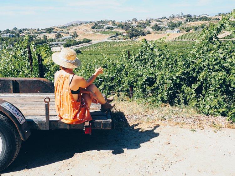 Vindemia Vineyard and Winery - Temecula Valley Wineries