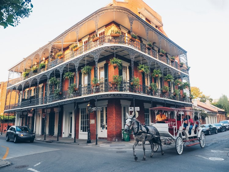 Horse Drawn Carriage Tour - Things you must do in the French Quarter