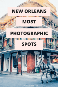 New Orleans Most Photographic Spots
