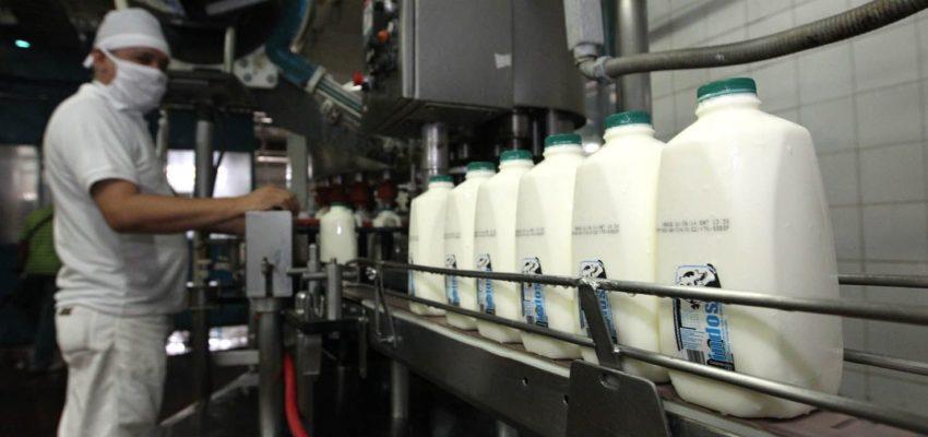fedenaga lácteos