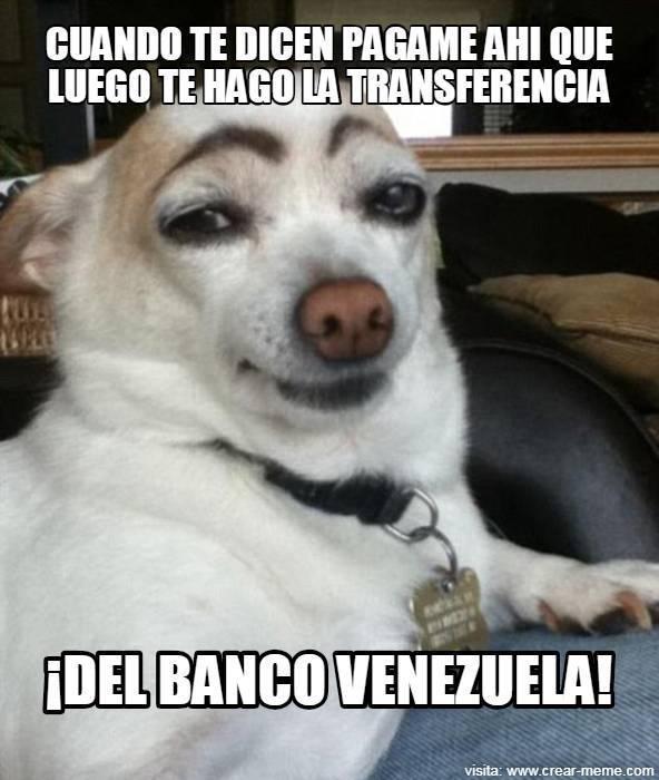 ante el desespero por el bdv el humor venezolano es el protagonista laverdaddemonagas.com 242357866 4485430481515194 8365452534664828216 n