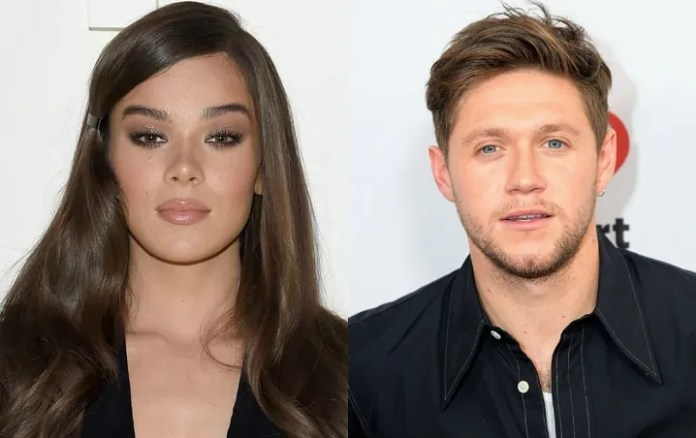 """Hailee Steinfeld talks about infidelity in the """"Wrong Direction"""", What Was Niall Horan?"""