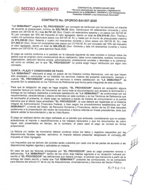 In the middle of the pandemic, Semarnat Quintana Roo awarded a contract for up to 86 thousand pesos to make copies for 9 months
