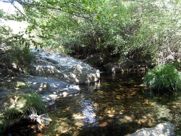 El Jaramilla en los Paredones