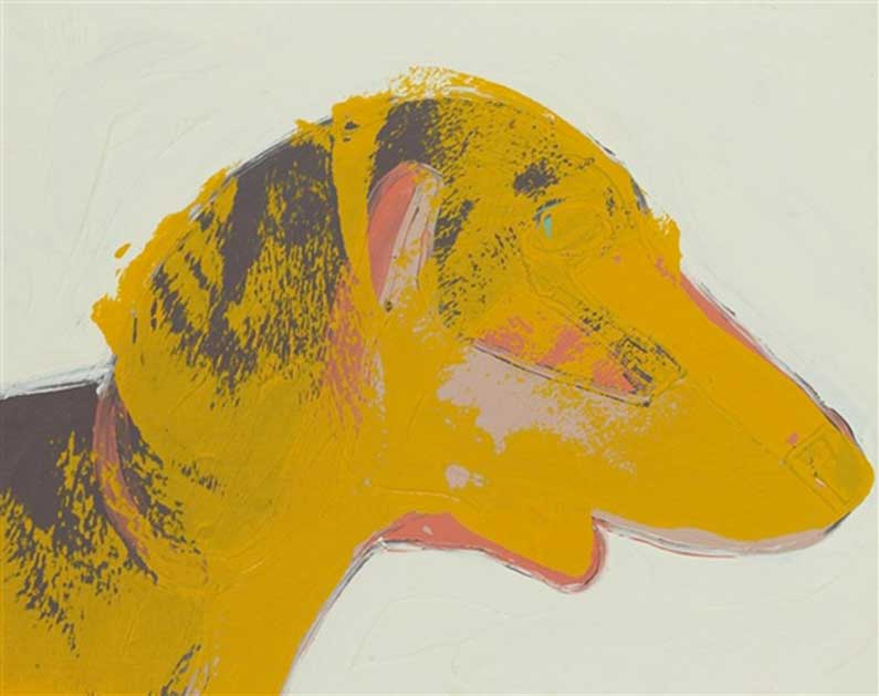 Amos, cane bassotto di Andy Warhol