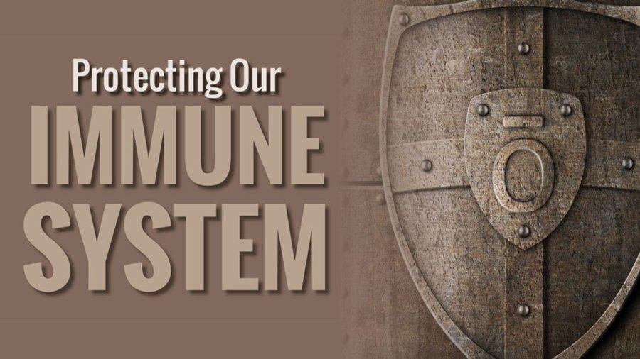 16x9-1295x500-protecting-our-immune-system-living-mag-us-eng