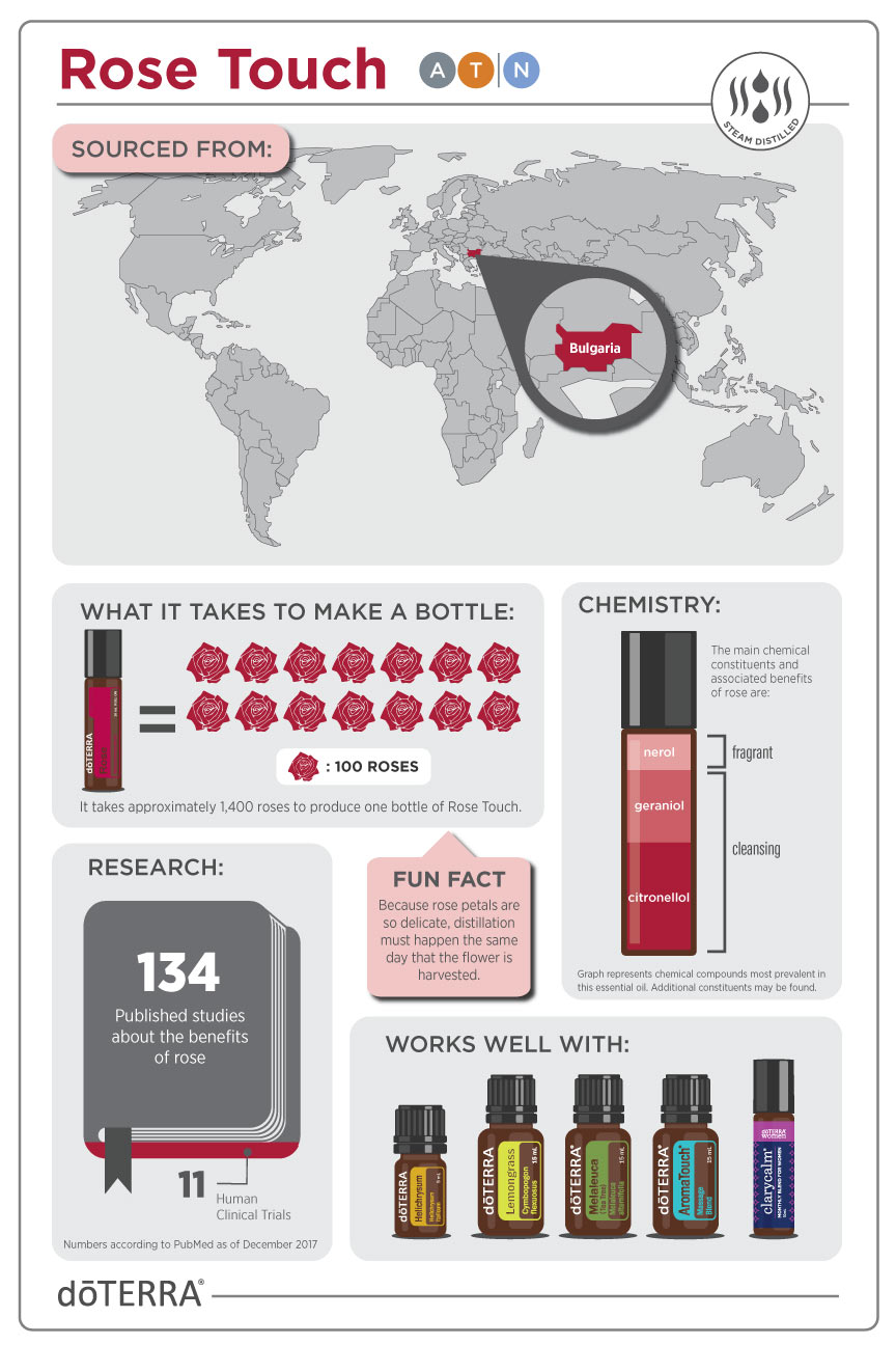 2x3-864x1296-rose-touch-infographic-us-en-web