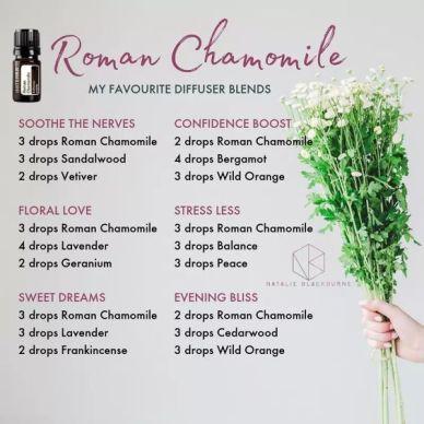 Roman Chamomile diffuser blends 3