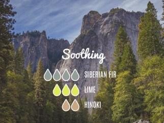 Siberian fir, Hinoki e Lime diffuser blend