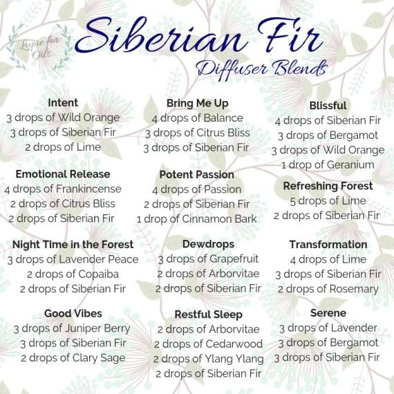 Siberian fir diffuser blends 2