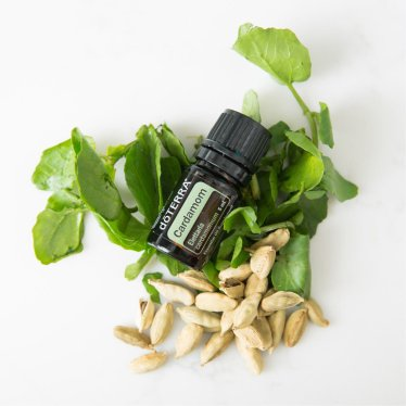 1x1-1200x1200-cardamom-oil-benefits-and-uses