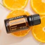 Zendocrine-600x900-2