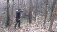 2012-03-11-battuta-fiarc-trescore_23