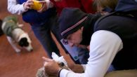 Fiarc-Indoor-italiano-2012_86