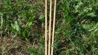 osvaldo-micheletti-frecce_10