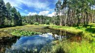 La Via di Mezzo al 11° Torneo del Renon! Due fantastiche giornate nei boschi del Renon, fantastici al sole (1° giornata), ma anche sotto la