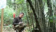 roving-del-lupo-2012_18