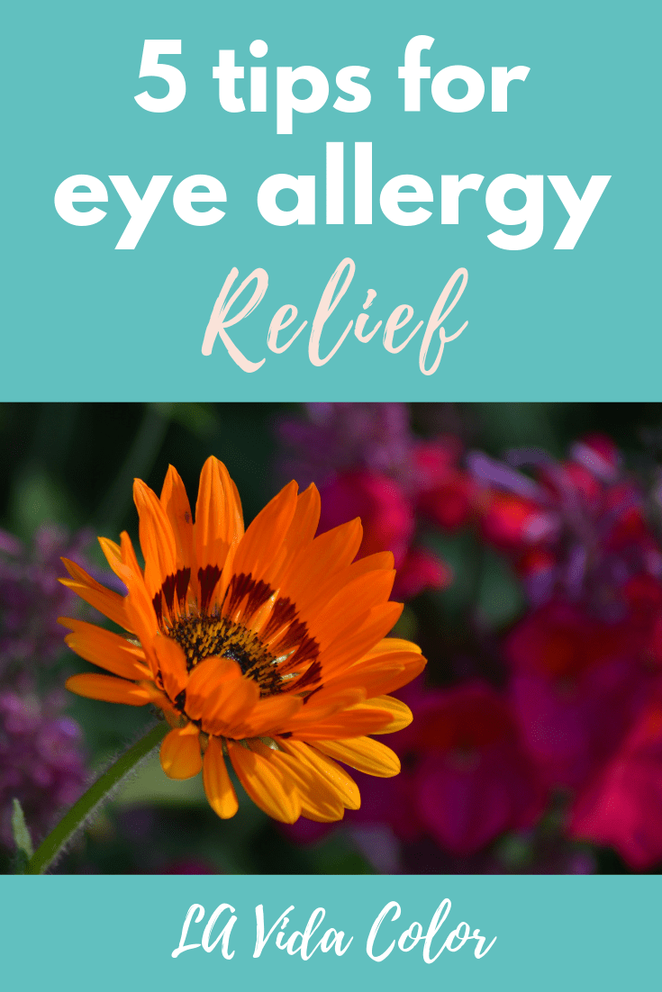 If you are looking for some eye allergy relief this season, check out this post for tips and remedies on how to get rid of itchy eyes and puffy eyelids! This list includes natural treatments as well! #allergies #puffyeyes