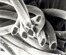 A weird close up of viscose cellulose!