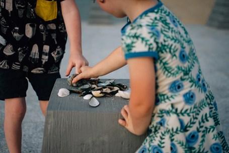Niños coleccionando conchas