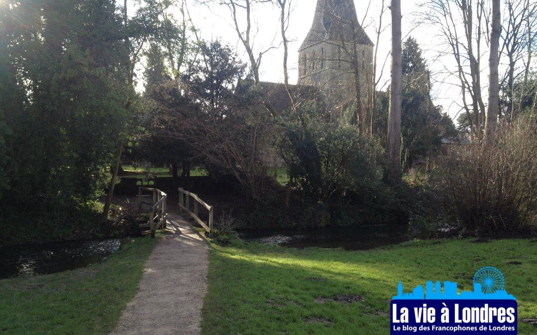 Visiter l'Angleterre : Shere