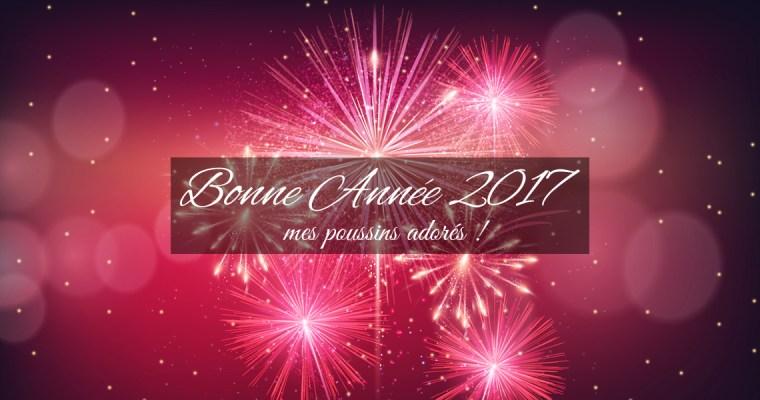 Hello january-Bonne année 2017