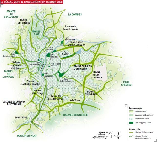 réseau vert