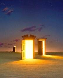 doors of perception lavinia plonka