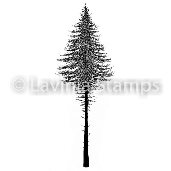 fairy fir tree 2