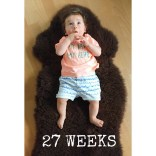 27 Wochen