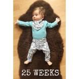 25 Wochen
