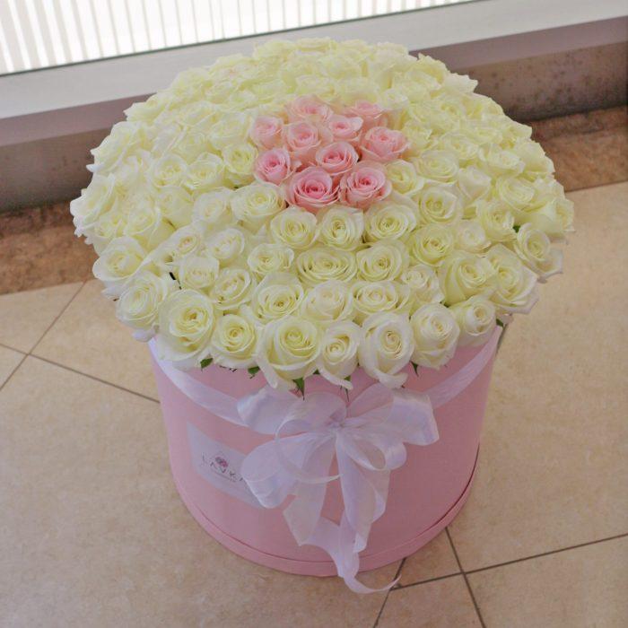 Розы BOX XL