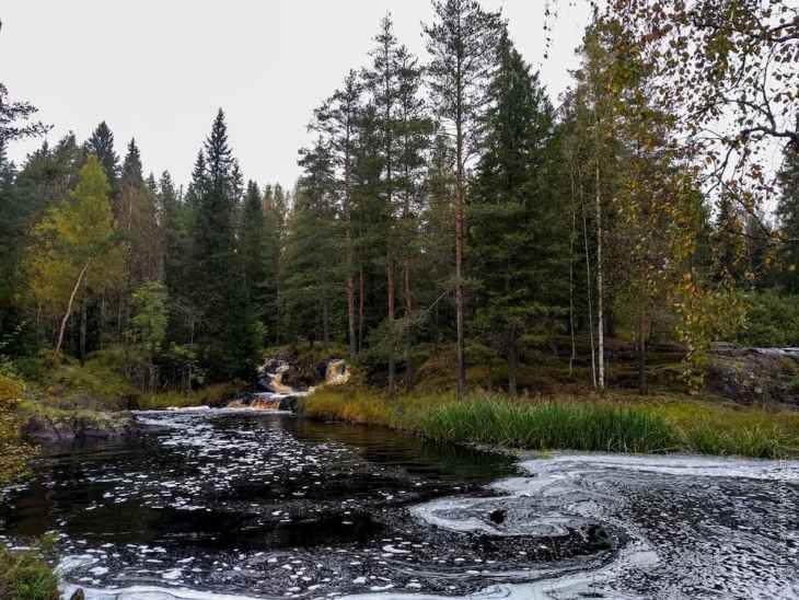 Почему в Карелии водопады коричневого цвета