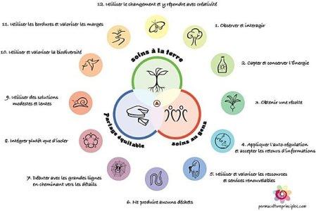 Comprendre la permaculture