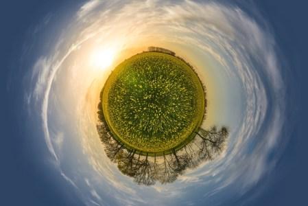 Environnement : le jardin planétaire