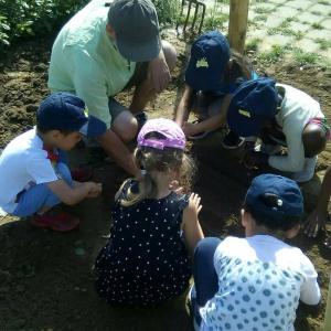 Atelier Jardin partagé des enfants, Bussy St Georges