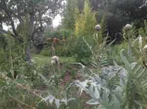 Jardin en permaculture, le Jardin d'épices