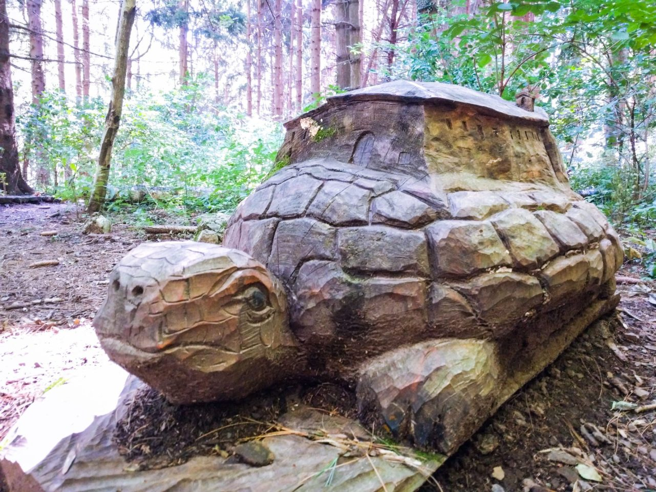 Tartaruga, Sentiero Lo Spirito del Bosco
