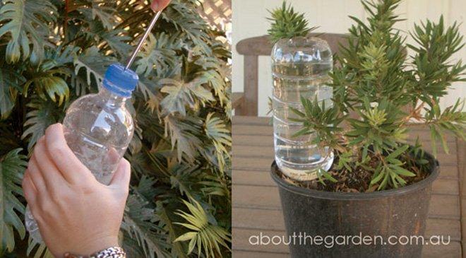 regar-plantas-botella
