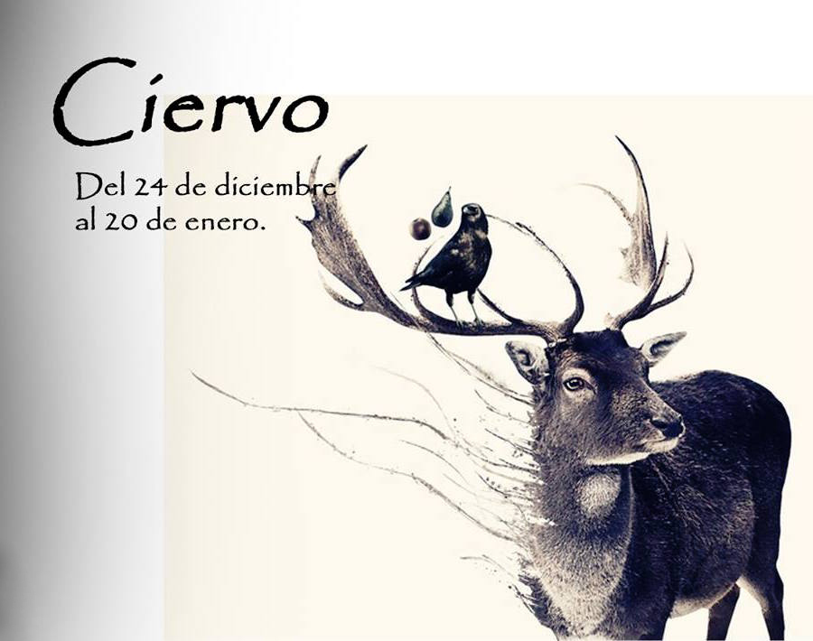 https://i0.wp.com/lavozdelmuro.net/wp-content/uploads/2015/10/horoscopo-celta-de-los-animales-1.jpg