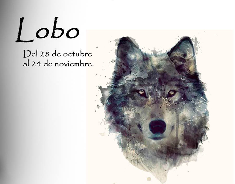 https://i0.wp.com/lavozdelmuro.net/wp-content/uploads/2015/10/horoscopo-celta-de-los-animales-12.jpg