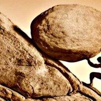 Valores : La perseverancia. PRM Fomentando principios,  valores y hábitos