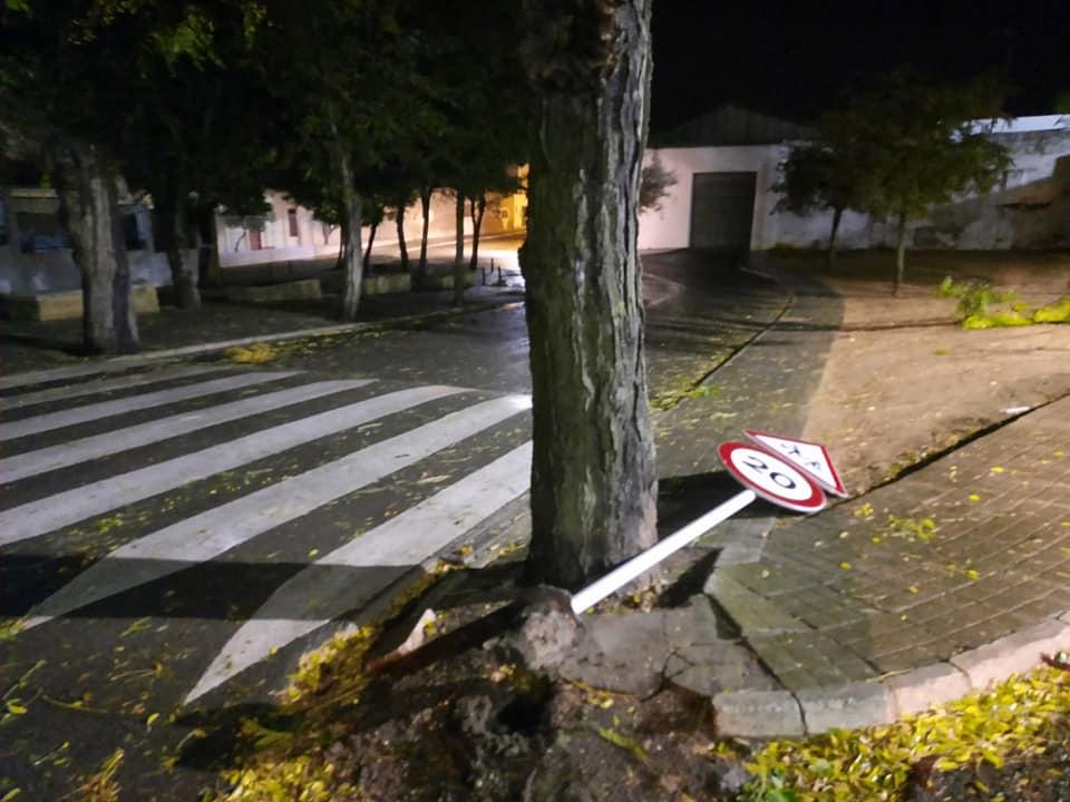El temporal deja varias incidencias en Carmona 7