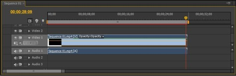 Adobe Premiere Pro - окно Timeline