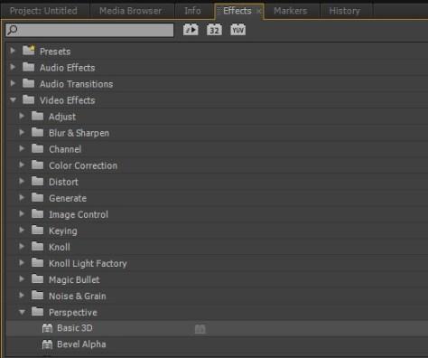 Adobe Premiere Pro Basic 3D