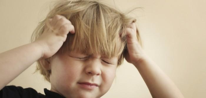 Как начисляются алименты на двоих детей