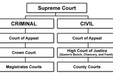 Courts State Court Information